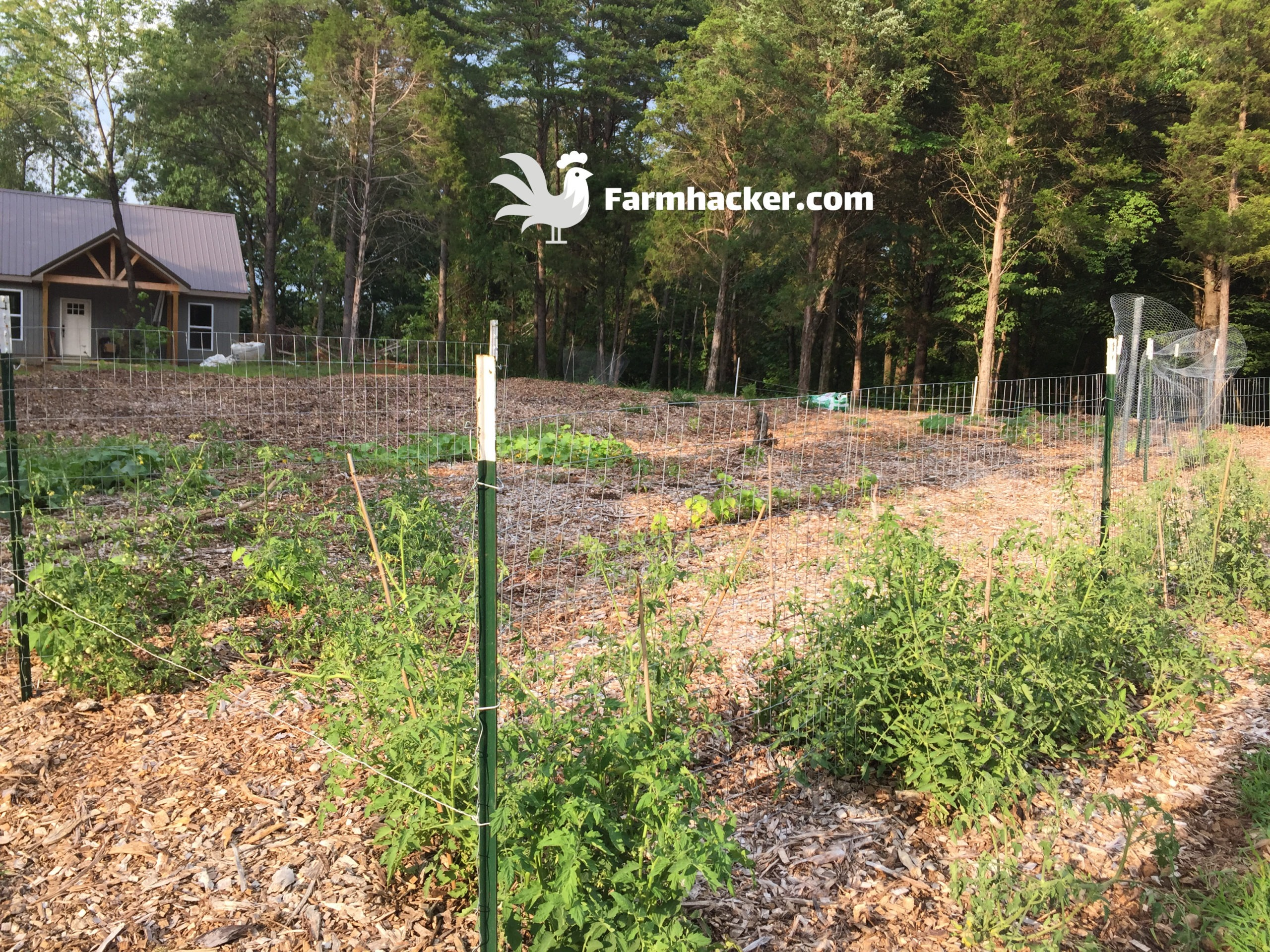 Woodchip Gardening - How to Start a Farm From Scratch