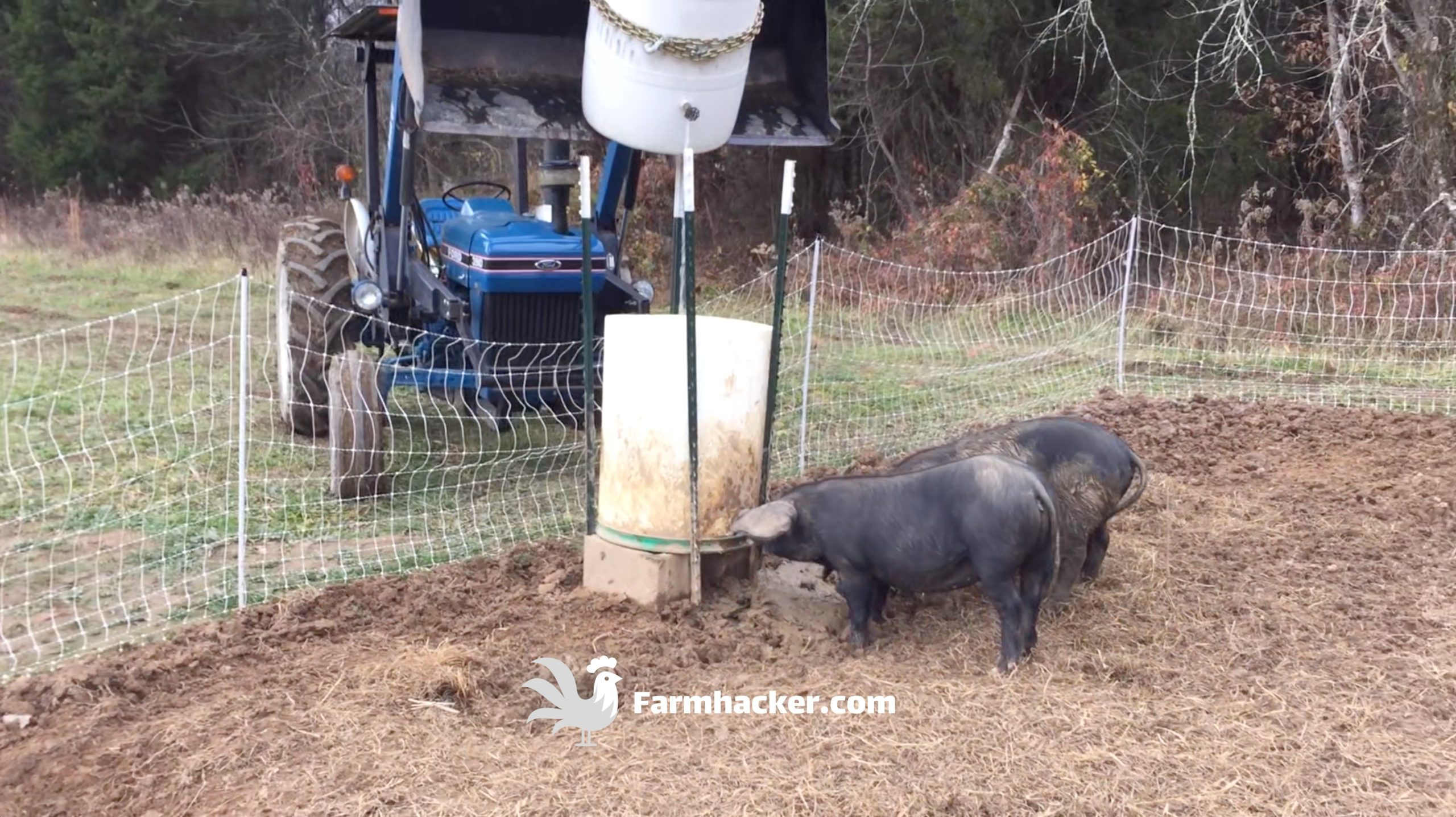 How to Make an Automatic Pig Waterer Drinker Set Up