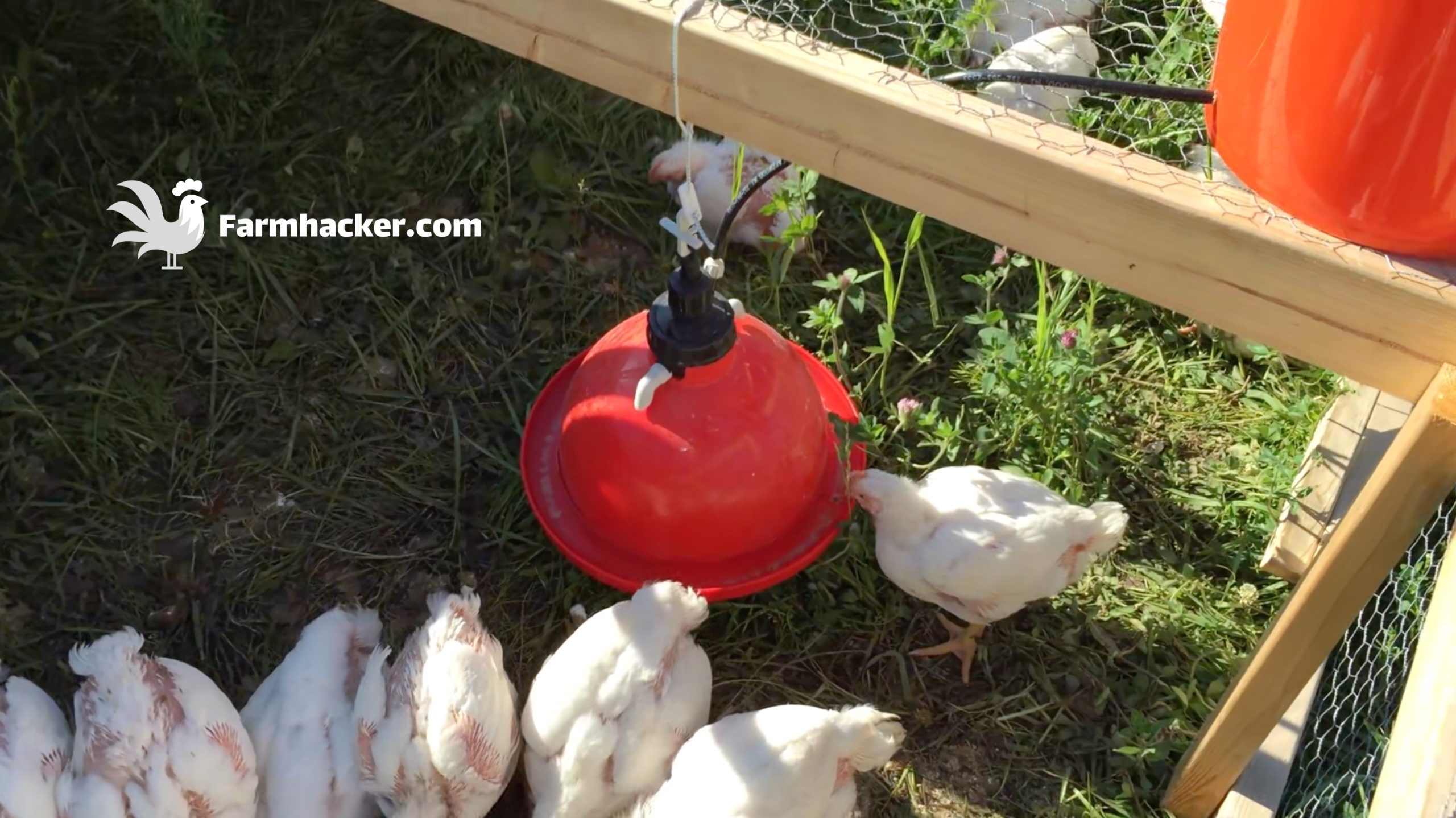 How to Build a Joel Salatin Style Chicken Tractor Step 4.4