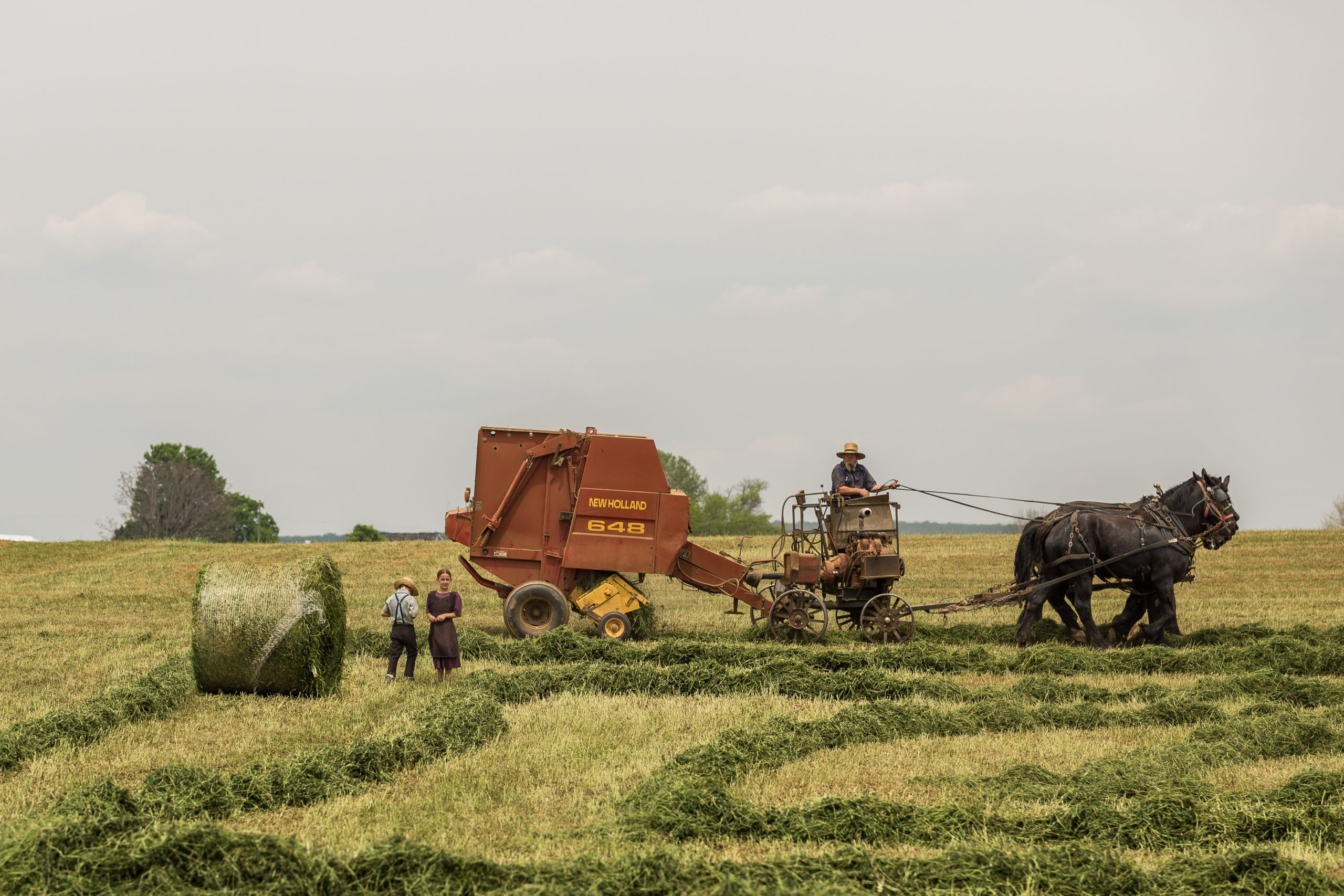 Amish Bailing Hay With a Team of Horses - Farm Background Wallpaper Pictures