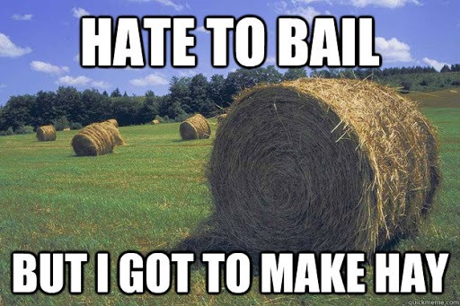 Hate to Bail but I Got to Make Hay - Farming Memes - Round Bale Image