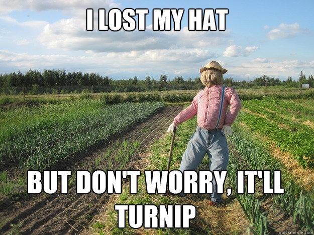 I Lost My Hat but Don't Worry, It'll Turnip - Farming Memes - Scarecrow in a Field Image