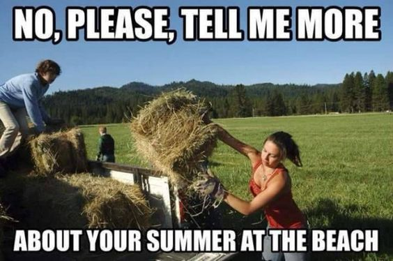 No, Please Tell Me More About Your Summer at the Beach - Farming Memes - Girl Throwing a Hay Bale Image