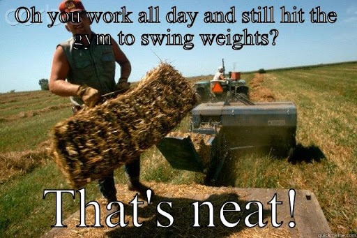 Oh You Work All Day and Still Hit the Gym to Swing Weights, That's Neat - Farming Memes - Guy Loading Hay Image