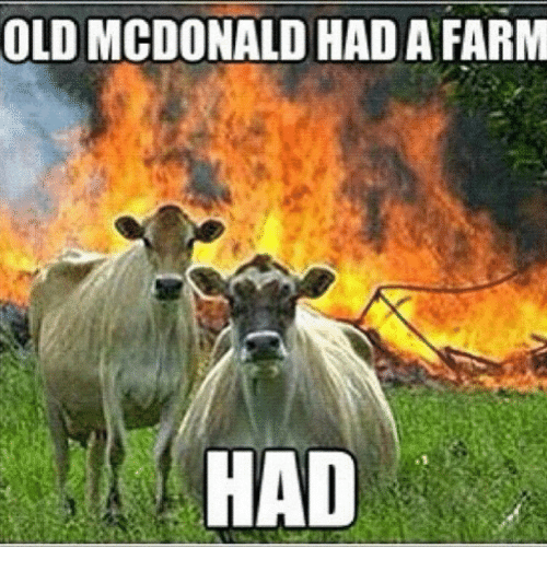 Old McDonald Had a Farm, Had - Farming Memes - Cows in Front of a Burning Barn Image