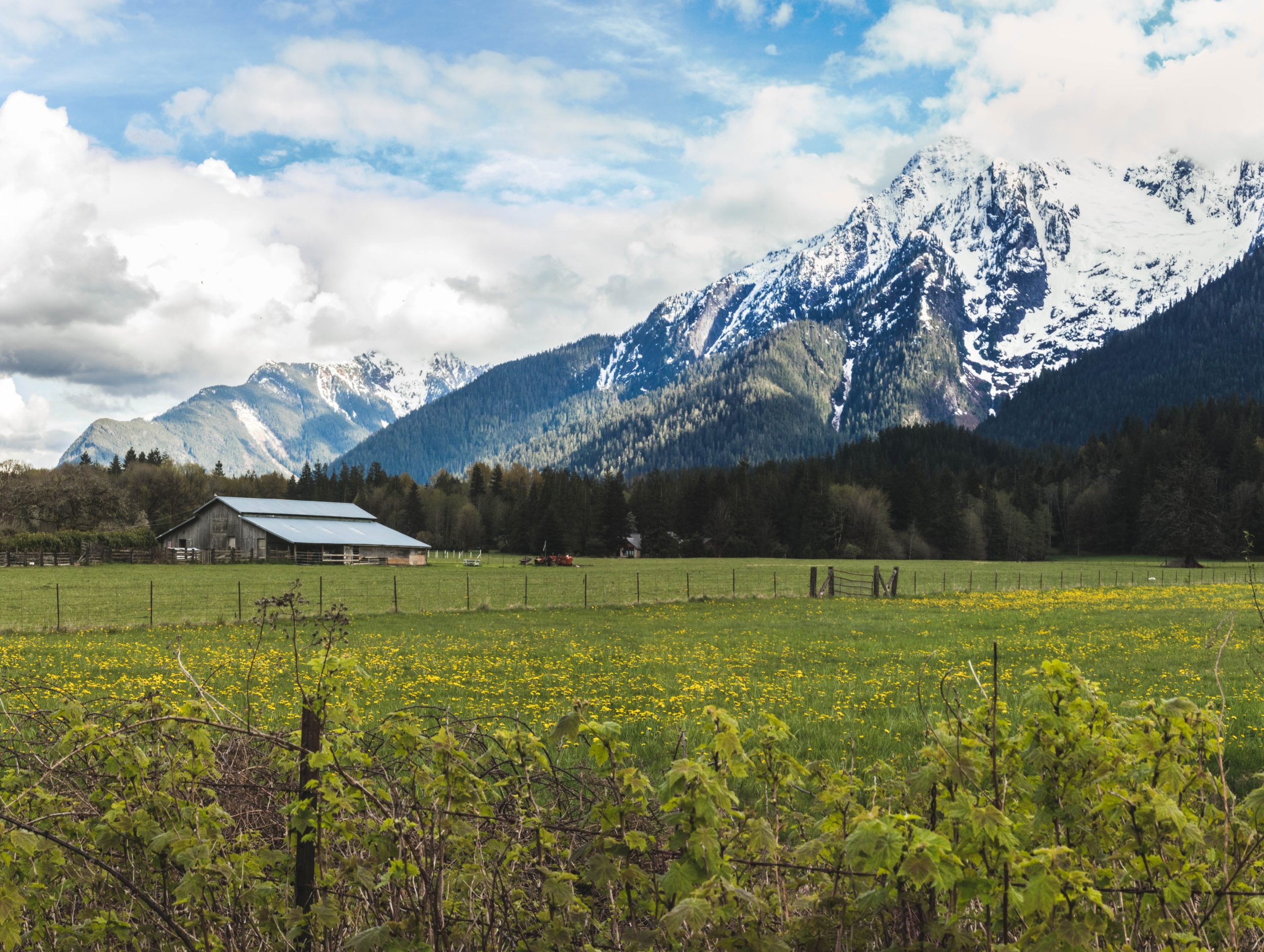 Pasture and Barn Against the Backdrop of a Mountain - Farm Background Wallpaper Pictures