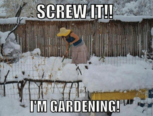 Screw It, I'm Gardening - Farming Memes - Woman Gardening in the Snow Image