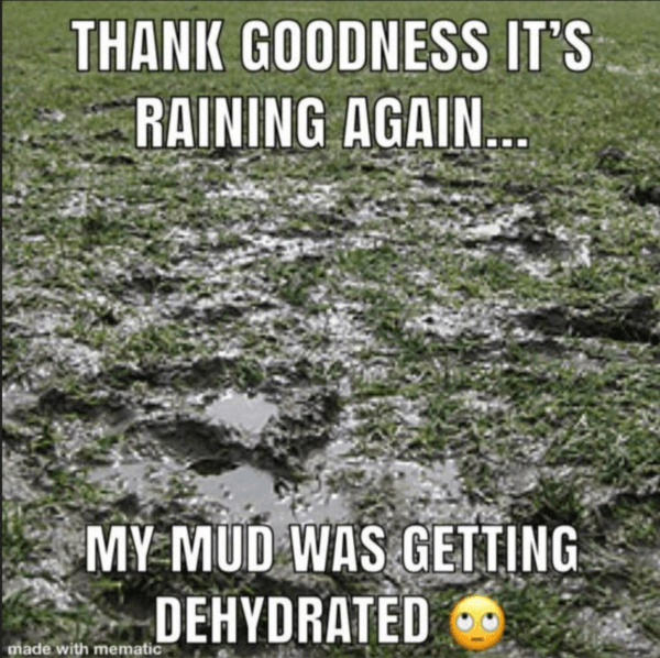 Thank Goodness It's Raining Again, My Mud Was Getting Dehydrated - Farming Memes - Muddy Field Image