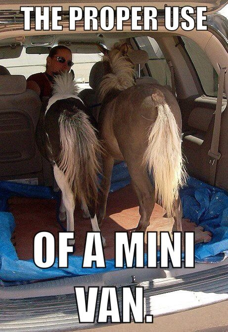 The Proper Use of a Mini Van - Farming Memes - Two Ponies in the Back of a Van Image