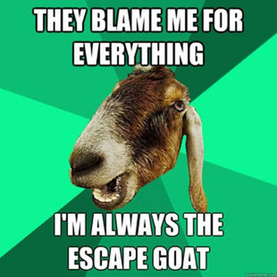 They Blame Me for Everything, I'm Always the Escape Goat - Farming Memes - Goat Image