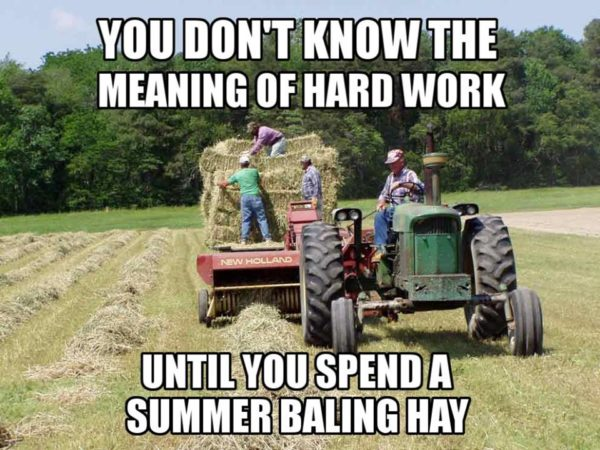 You Don't Know the Meaning of Hard Work Until You Spend a Summer Baling Hay - Farming Memes - Guys Gathering Hay in a Field Image