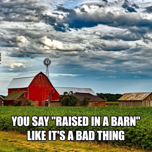 You Say Raised in a Barn Like It's a Bad Thing - Farming Memes - Farm with a Barn Image