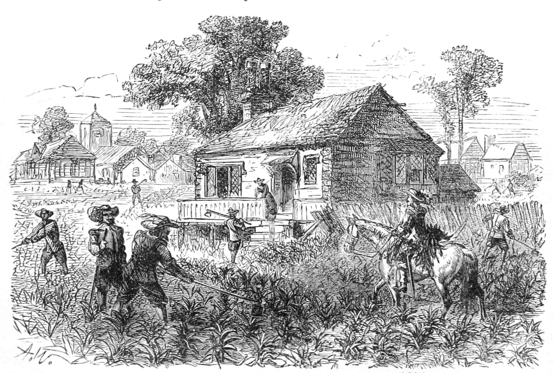 Read more about the article The Crazy Story of How Tobacco Saved Jamestown