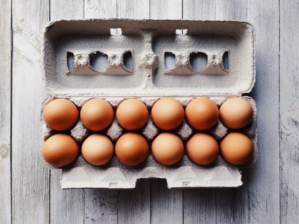 The 3 Best Egg Cartons for a Chicken Egg Business in 2021