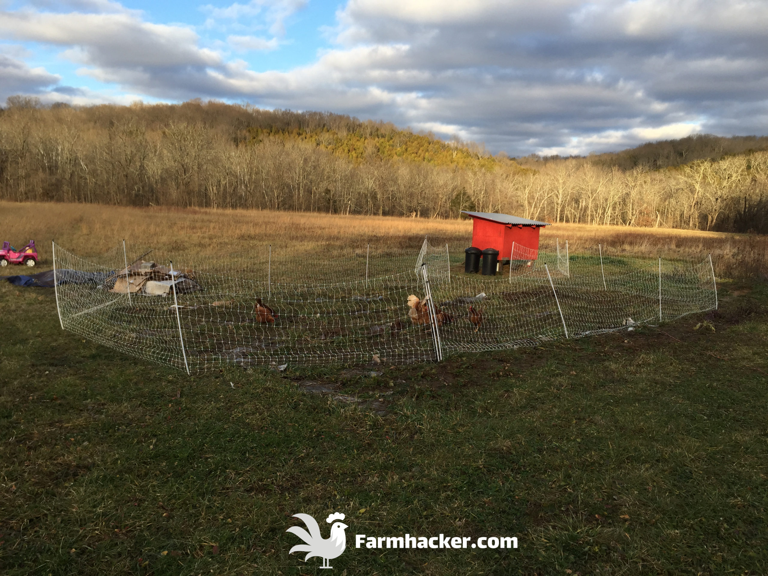 Best Free Chicken Coop Plans With Poultry Netting