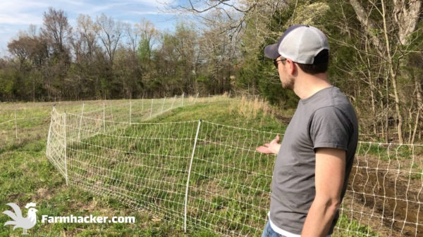 The 2 Best Poultry Netting Fences in 2021