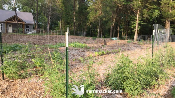 How to Start a Wood Chip Vegetable Garden