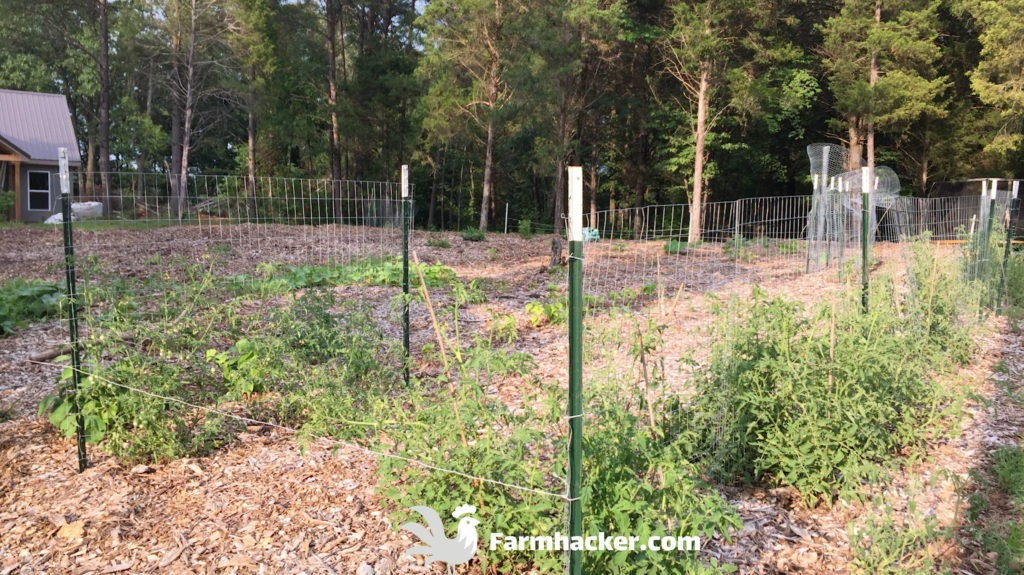 New Wood Chip Garden With Vegetables