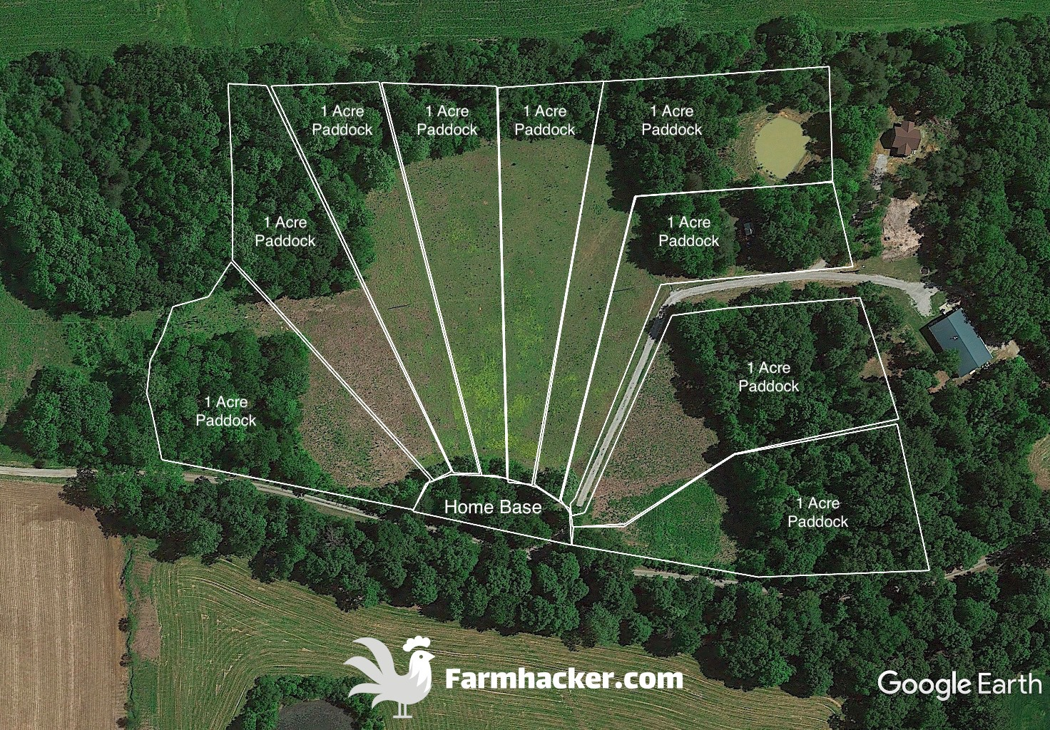 Pasture Pigs Rotational Grazing Paddock Design Layout